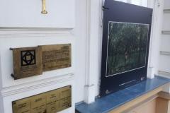 muzeul-de-arta4