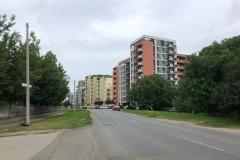 alexandrescu3