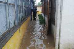 buzias-inundatii4