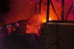 incendii-timis1