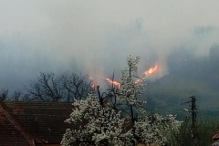 incendiu-tomesti5