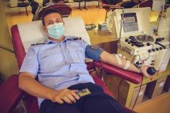 pompieri-donare-de-sange3