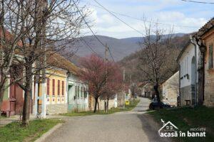 Color the Village